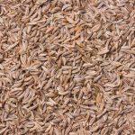 Cumin - huile essentielle bio pour la cuisine