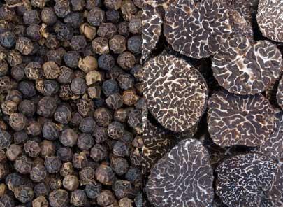 Poivre noir et truffe noire - huile essentielle bio pour la cuisine