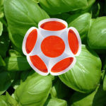 Crème de tomate au basilic à pesto