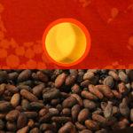 Velouté de potimarron à la fève de cacao
