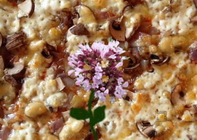 Pizza végétale à l'origan provençal