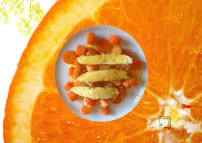 Petite sauce orange givrée fenouil des vignes