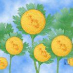 Galette de maïs à la coriandre feuille